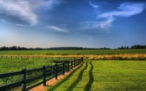 doğa manzarası, güzel manzara, yeşil alanlar